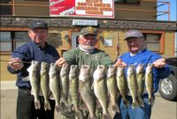 Chamberlain Sd Fishing Report